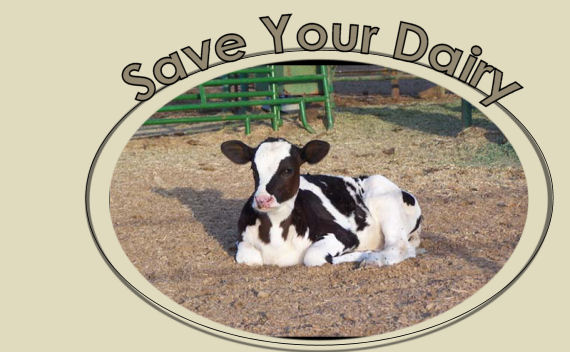 Save Your Dairy